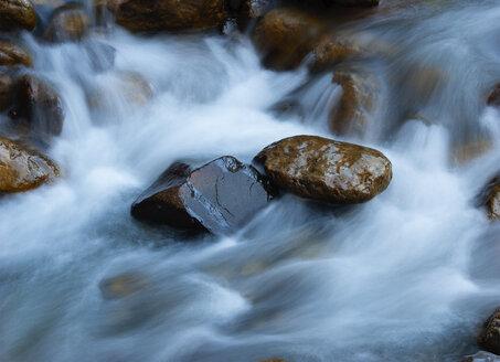 Germany, Bavaria, Berchtesgadener Land, Ramsau, Ramsauer Ache - WWF04865