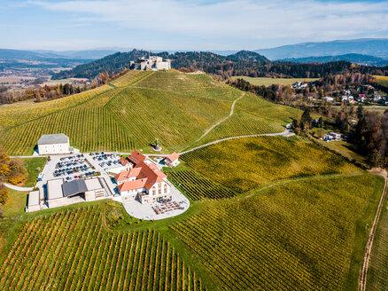 Austria, Carinthia, Sankt Veit an der Glan, drone view of Taggenbrunn Castle - DAW00881