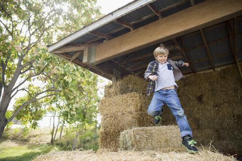 Playful boy jumping on hay bales in barn - HEROF05763