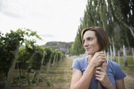 Smiling female vintner looking away in vineyard - HEROF05993