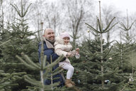 Father and daughter decorating Christmas tree on a plantation - KMKF00731