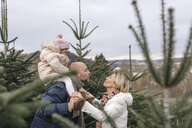 Couple with daughter kissing on a Christmas tree plantation - KMKF00746