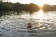 Senior man swimming in a lake at sunset - GUSF01818
