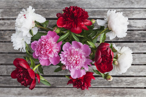 Bunch of white, red and pink Peonies - GWF05794