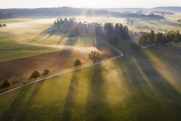 Germany, Bavaria, Ried near Dietramszell, ground fog at sunrise, drone view - SIEF08350