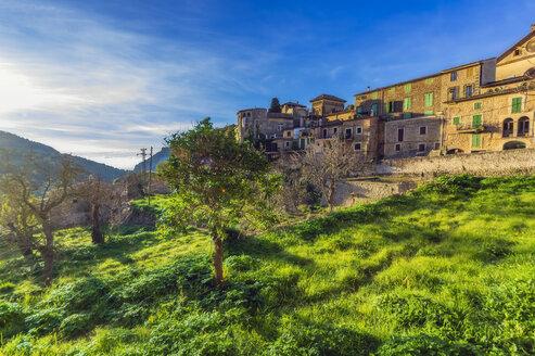Spain, Baleares, Mallorca, Valldemossa - THAF02450