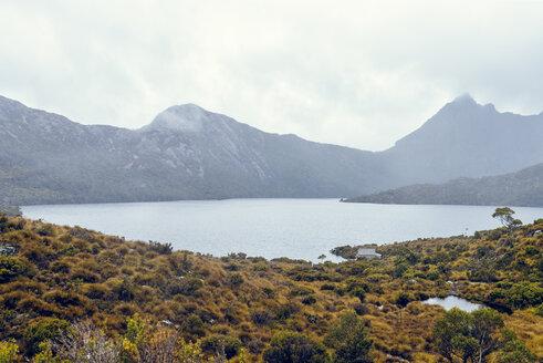 Australia, Tasmania, Cradle Mountain-Lake St Clair National Park - KIJF02191