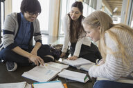 High school students studying with books - HEROF06574