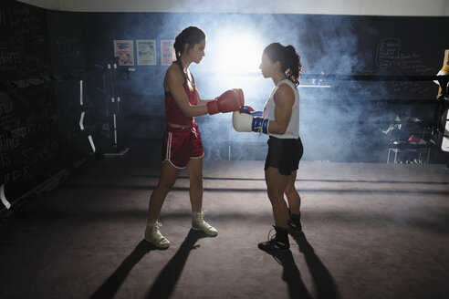 Female boxers training, touching gloves in boxing ring - HEROF07381