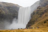 Iceland, tourists at Skogafoss Waterfall - WIF03794
