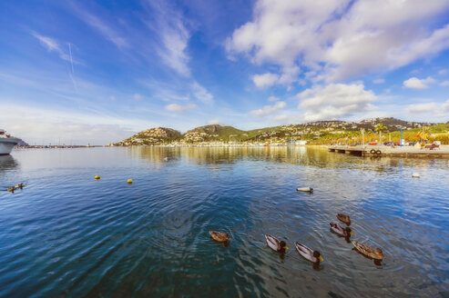 Spain, Balearic Islands, Mallorca, Andratx Region, Port d'Andratx, natural harbour - THAF02476