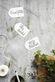 Merry Christmas written in 3 different languages (english, italian, spanish) on calligraphy gift tags - LSF00084