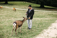 Full length of man feeding deer at national park - ASTF02777