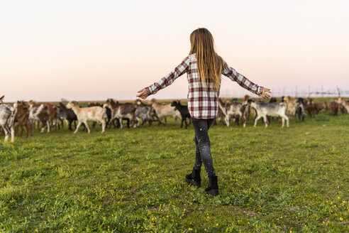 Back view of girl herding a goat herd - ERRF00702