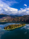 Germany, Upper Bavaria, Lake Walchen, Aerial view of Sassau Island - AMF06749