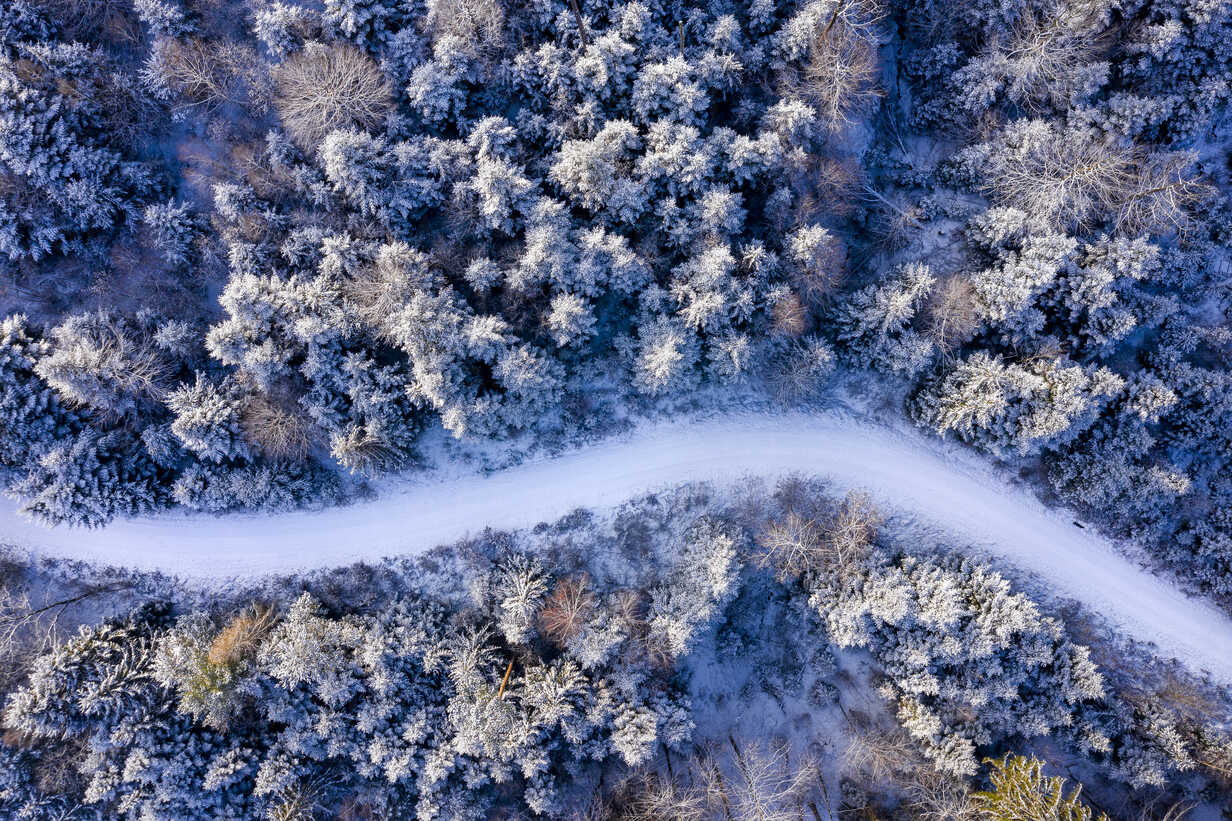 Germany, Baden-Wuerttemberg, Rems-Murr-Kreis, Swabian forest, Aerial view of forest in winter - STSF01828 - Stefan Schurr/Westend61