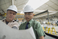 Workers reviewing blueprints in manufacturing plant - HEROF09044