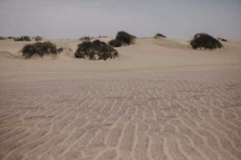 Namibia, Walvis Bay, sand in Namib-Naukluft National Park - LHPF00427