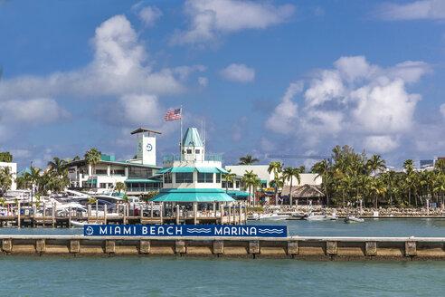 Miami Beach Marina, Yachthafen, Miami Beach,  Miami-Dade County, Florida, USA, Nordamerika - MABF00518