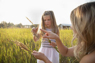 Mother and curious daughter looking at wheat stalk in sunny, rural field - HEROF10766