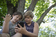 Brothers using smart phone under tree - HEROF11327
