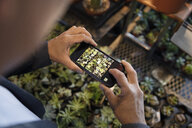 Man with camera phone photographing succulent plants in plant shop - HEROF11867
