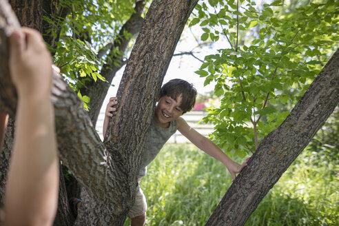 Playful boy climbing tree - HEROF11888