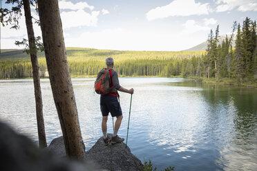Mature man hiking with nordic walking poles, enjoying tranquil forest lake view, Alberta, Canada - HEROF11951