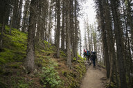 Friends hiking with backpacks on remote trail in woods - HEROF12362