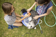 View from above tween girl friends giving dog bath in backyard - HEROF12506