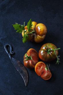 Chocolate Stripes Tomaten, Tomaten (Solanum lycopersicum), amerikanische Tomaten, Fleisch-Tomaten,braun-rot, grün, gestreift,  dunkler Untergrund, Messer, - CSF29237