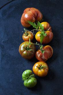 Chocolate Stripes Tomaten, Tomaten (Solanum lycopersicum), amerikanische Tomaten, Fleisch-Tomaten, braun-rot, grün, gestreift,  dunkler Untergrund - CSF29240