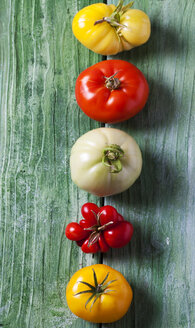 Row of five different tomatoes on green wood - CSF29270