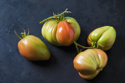 Four Oxheart tomatoes on dark ground - CSF29276