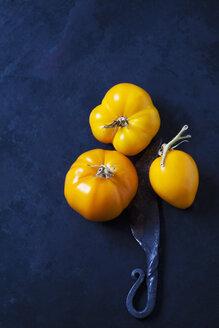 Golden Jubilee Tomaten (Solanum lycopersicum), Herkunft USA, gelb, dunkler Untergrund, altes Messer - CSF29279