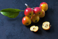 Sliced and whole ced crab apples - CSF29294
