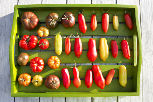 Wooden tray with various tomatoes, stage of ripeness, unripe and ripe - CSF29306