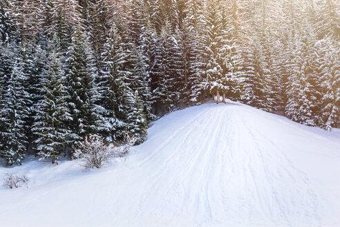 Italy, Trentino Alto-Adige, Val di Funes, Santa Maddalena on a sunny winter day - FLMF00116