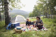 Senior couple enjoying picnic on blanket at rural campsite - HEROF13695