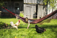 Girl relaxing in hammock in garden of a farm with chicken in foreground - SBOF01699