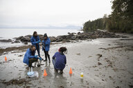 Eco-friendly scientists gathering specimens on rugged beach - HEROF15153