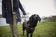 Black seeing eye dog leading visually impaired woman - HEROF15243