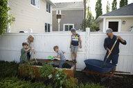 Family gardening in back yard - HEROF15327