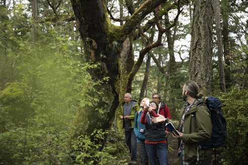 Trail guide leading active senior hikers in woods - HEROF15375