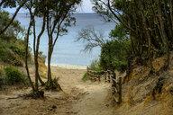 Italy, Tuscany, Castiglione della Pescaia, Punta Ala, way to the beach - LBF02340