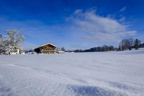 Bauernhaus, Schneelandschaft, Hub, Winter,  Bad Heilbrunn,  Oberbayern, Bayern, Deutschland - LBF02349