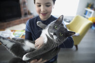 Portrait boy holding cute gray and white cat - HEROF16089