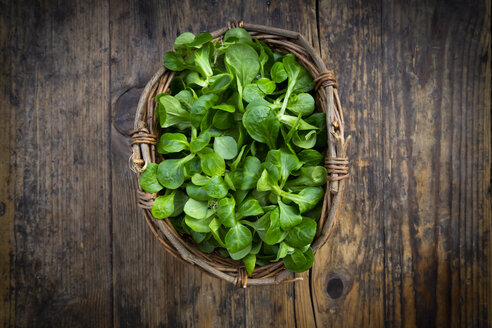 Lamb's lettuce in wickerbasket - LVF07745
