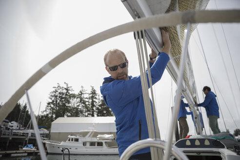 Sailing team preparing sail on sailboat in harbor - HEROF17081