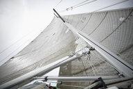 Towering sailboat sail - HEROF17774